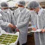 売上高100億円突破<br> 世界一の施設野菜メーカーを目指す