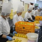誇れる島のレモンケーキと雇用を生む。働き方改革の次は『モチベーションアップ』