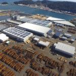 国内の製材トップ企業<br>売上高1200億円を突破 国産材活用にも力