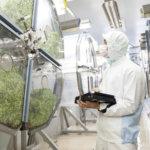スプラウト(発芽野菜)で全国トップ<br>目指すは世界一の施設野菜メーカー